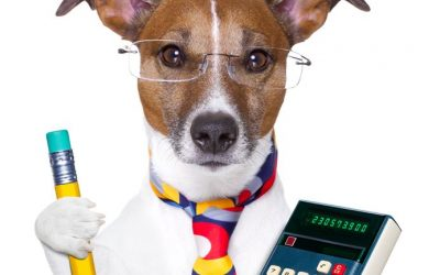 A good accountant can do a lot more for you than just your taxes!